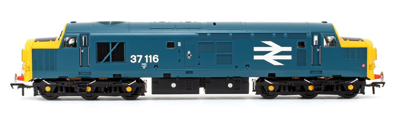 32-781SDDS Class 37116 in BR Blue (Special) Livery Diesel Locomotive *Regional Special Edition* DCC Sound Fitted