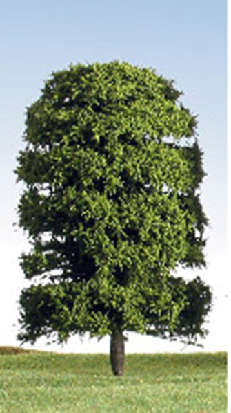 125mm Green Deciduous Tree