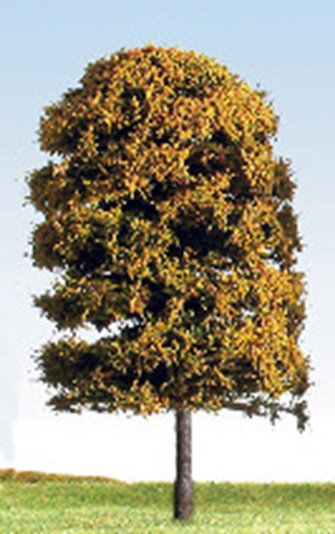125mm Autumn/Blossom (Mixed Colours) Deciduous Tree