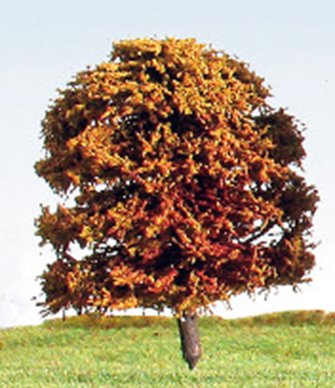 70mm Autumn/Blossom (Mixed Colours) Deciduous Tree