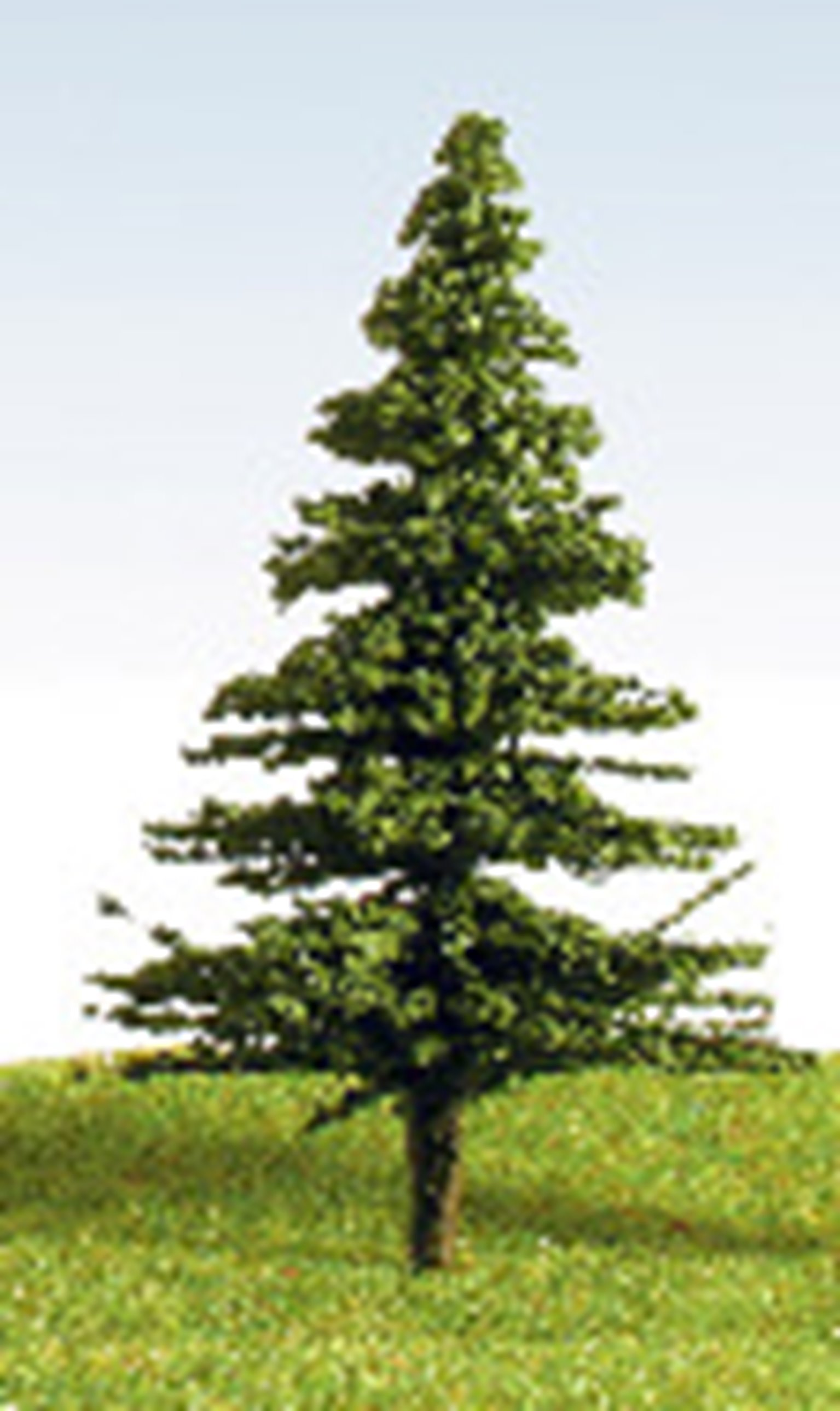 90mm Fir Tree