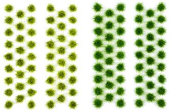 Grass Tufts - Summer (104)