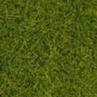 Meadow Mat - Spring (12mm Grass)