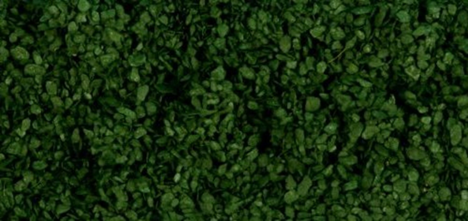 Scenic Leaves - Dark Green (50g)