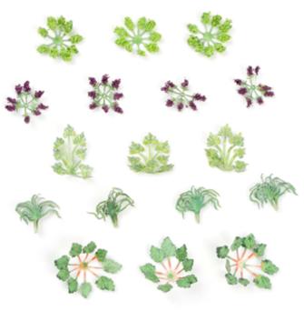 Laser Cut Minis - OO/HO Scale Garden Plants (17)
