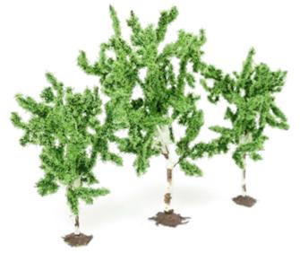 Tree Set - Birch (3)