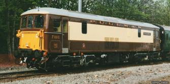 Class 73 101 'The Royal Alex' Pullman Brown/Cream