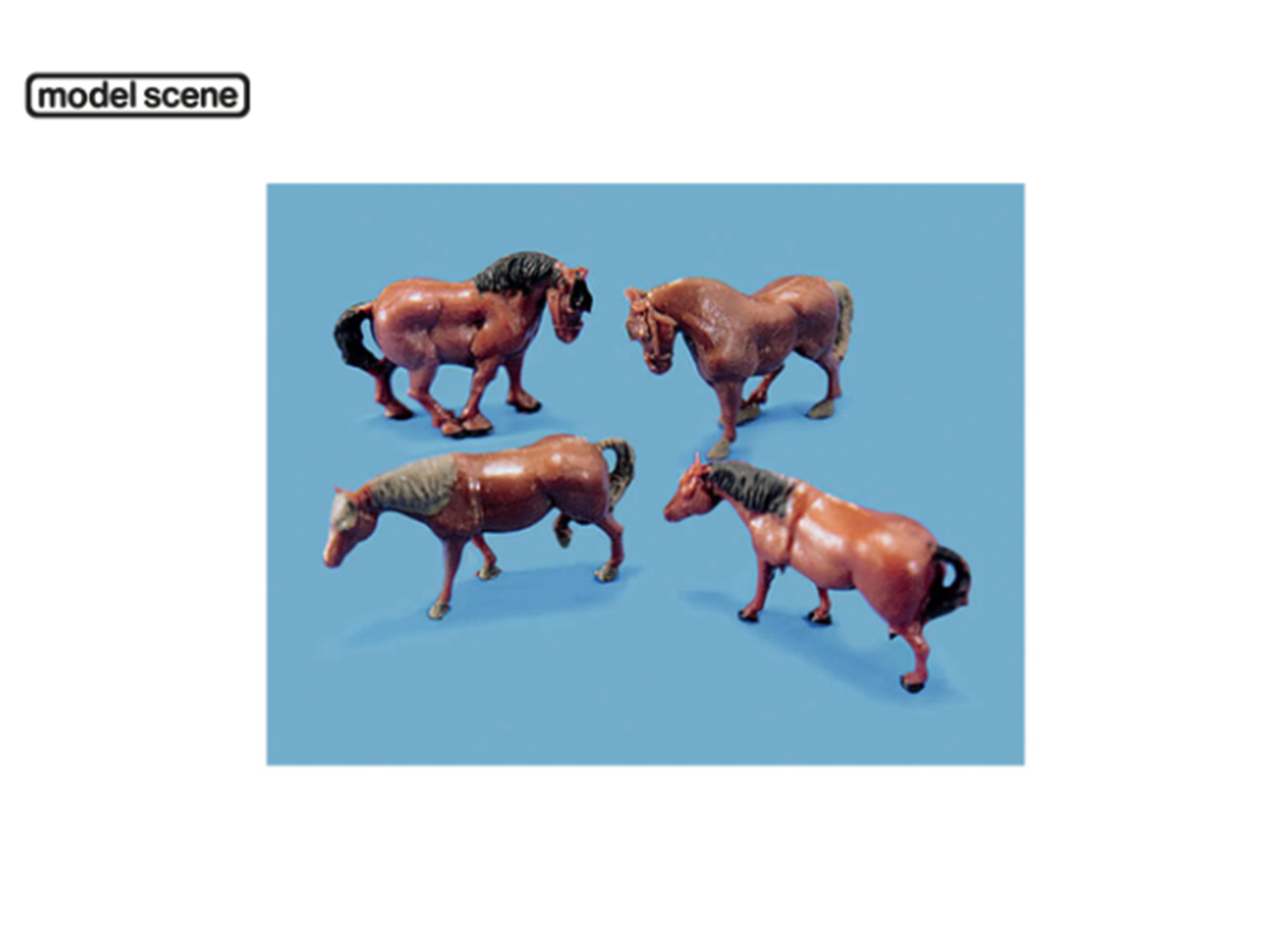 Horses and Ponies (Pack of 4)