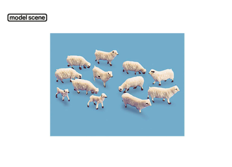 Sheep and Lambs (12 items)
