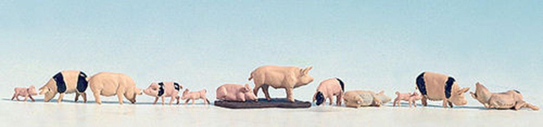 Figures - Pigs (12)
