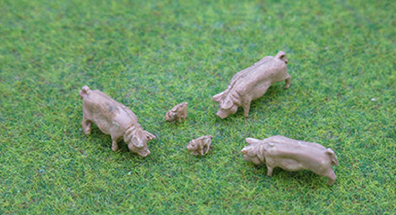 PDZ49 P&D Marsh OO Gauge Pigs