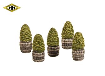Five Mini Trees in Half Barrels