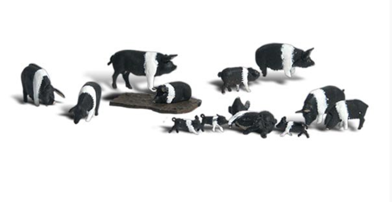Scenic Accents Figures - Hampshire Pigs