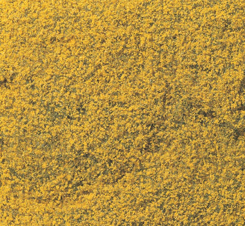 Yellow Flowering Foliage