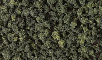 Forest Blend Bushes