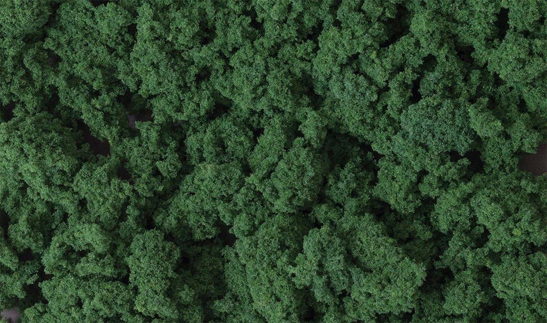 Dark Green Clump Foliage