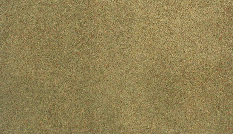 50 x 100 Summer Grass Rg Roll