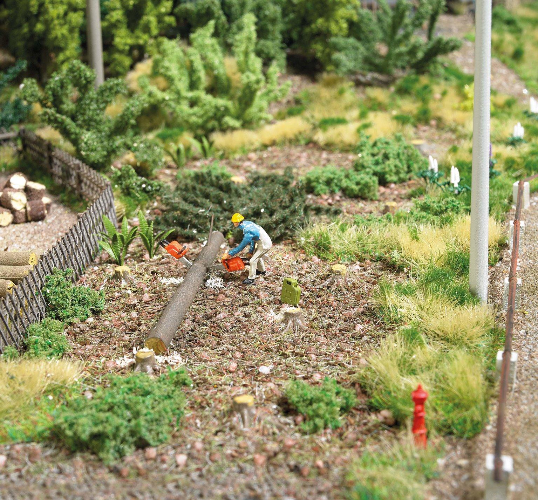 Figures - Tree Roots