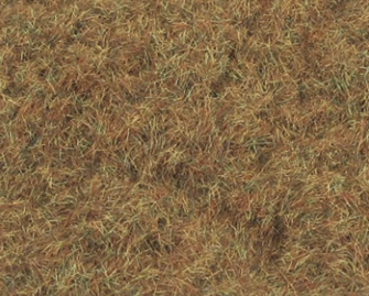 2mm Winter Grass