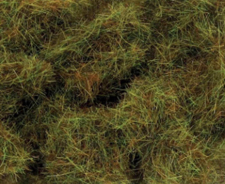 6mm Autumn Grass