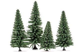 Large Fir Trees