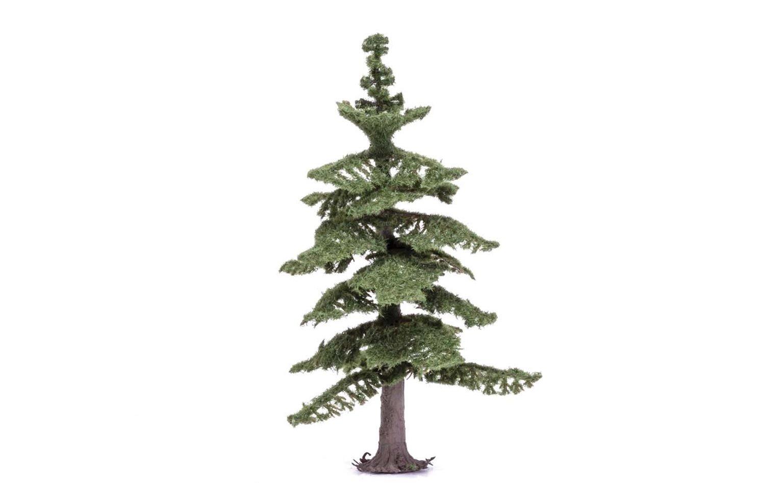 Medium Nordic Fir Tree