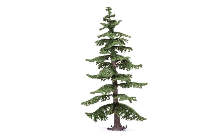 Large Nordic Fir Tree