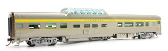 Budd Mid-Train Dome Car - Delaware & Hudson Bluff Point #36 - Voiture Skyline