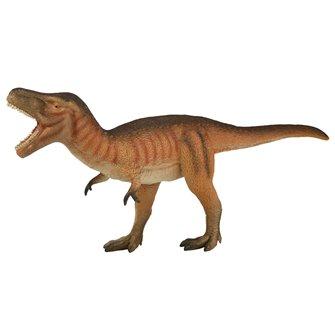 Natural History Museum Tyrannosaurus