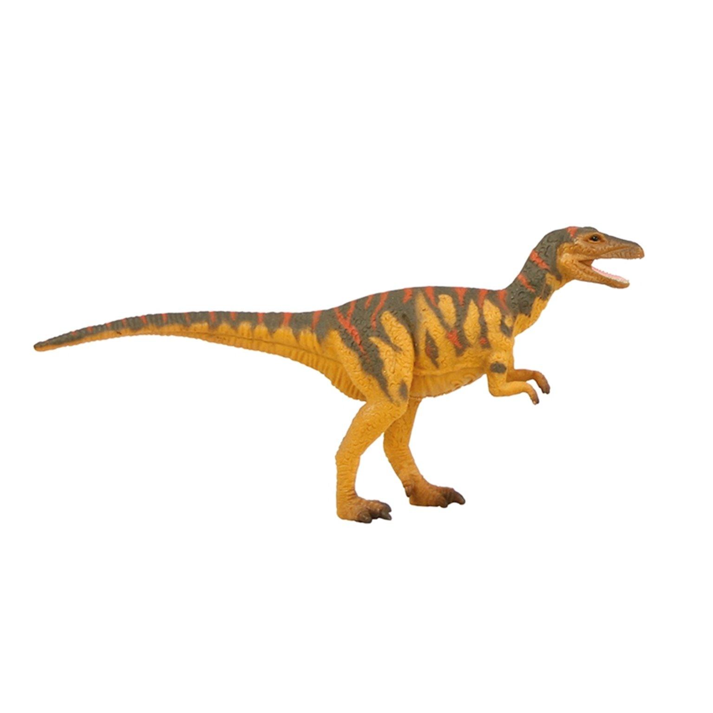 Natural History Museum Megalosaurus